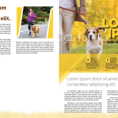 7_Dog Walker Newsletter_1