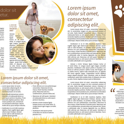 7_Dog Walker Newsletter_2